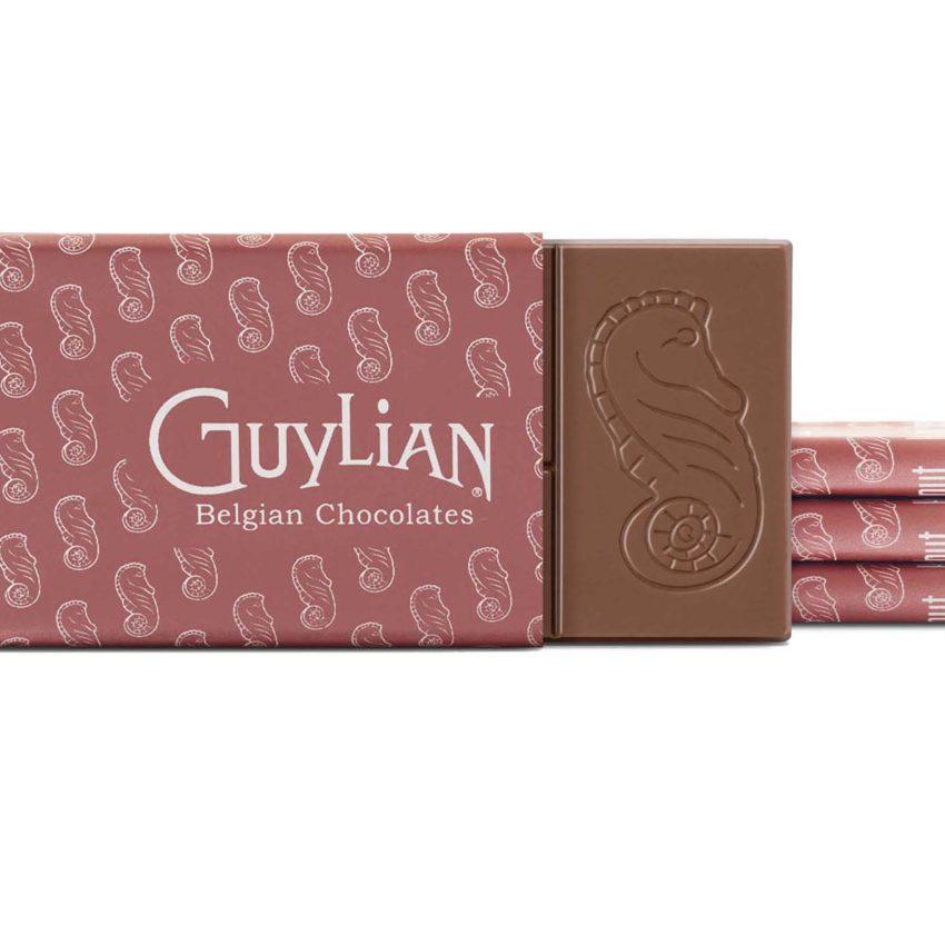 Guylian Belgian Chocolate Bar Hazelnut