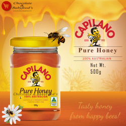 Capilano Pure Honey 500g