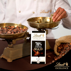 Lindt Excellence 70% Chocolate 100g